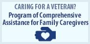 Program of Comprehensive Assistance for Family Caregivers