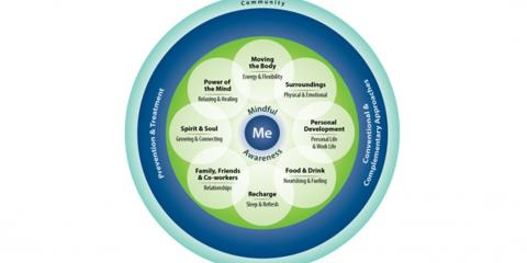 Whole Health wheel with four key principles and 9 elements.