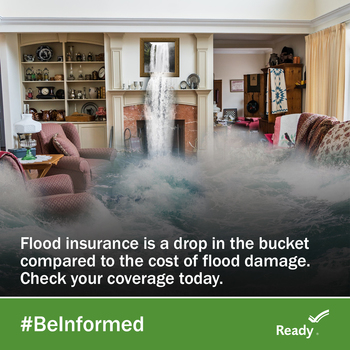 Cover image for Flood Safety Graphics Collection