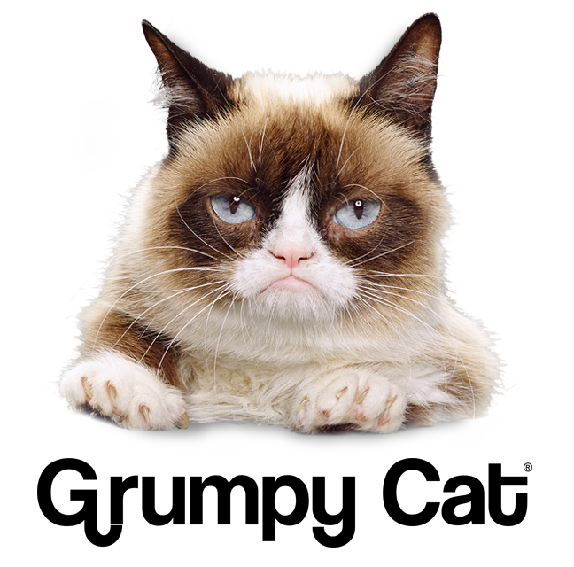 729 Grumpy Cat Supporting