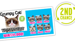 729 Grumpy Cat 2Ndchance