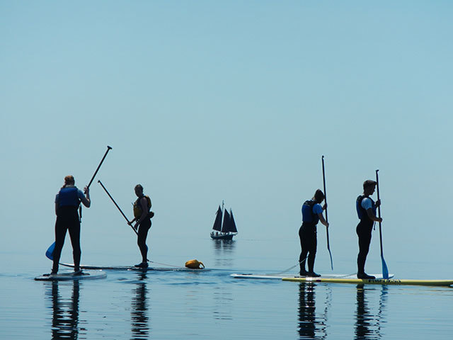 Four stand up paddleboarders with a sailboat in the background