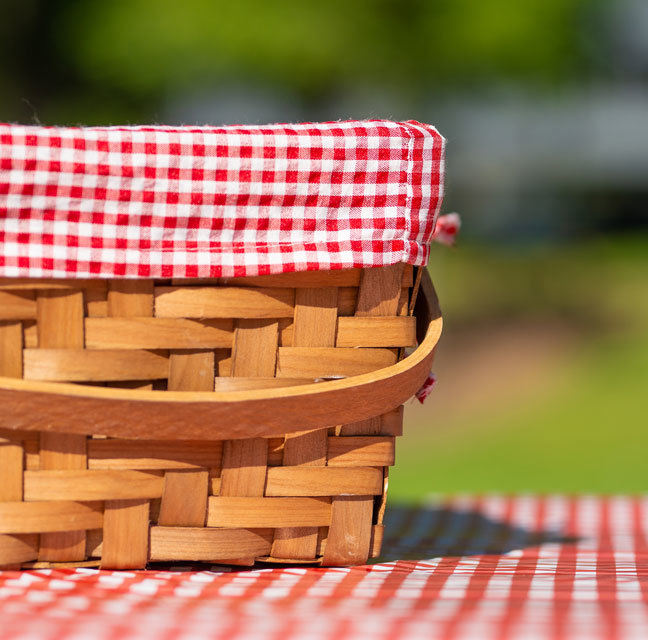 Picnic Supporting