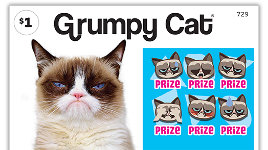 729 Grumpy Cat Main